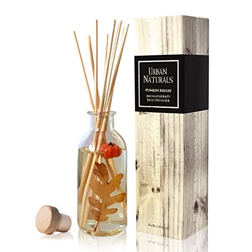 Urban Naturals Pumpkin Brulee Scented Sticks Reed Diffuser Oil Set | Fall & Winter Home Scent | Creamy Pumpkin Pie, Nutmeg & French Vanilla | Beautiful Autumn Home Decor | ()