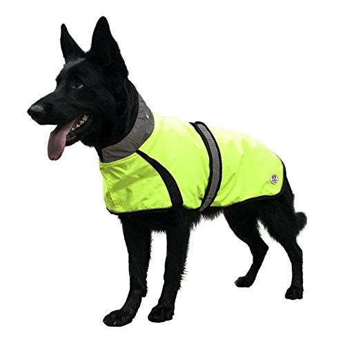 Derby Originals - chamarra impermeable para perro con reflectante y cinturón – chamarra amarillo de seguridad para...