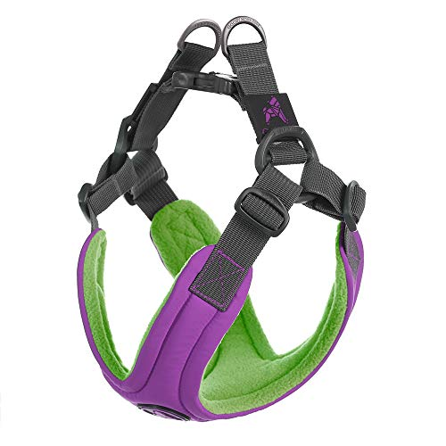 Gooby - Escape Free Memory Foam Harness, Small Dog Step-in Harness for Dogs That Like to Escape Their Harness, Purple, (Best Gooby Harness For Dogs)