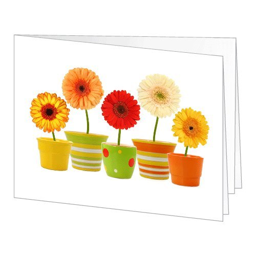 Amazon Gift Card - Print - Flower Pots