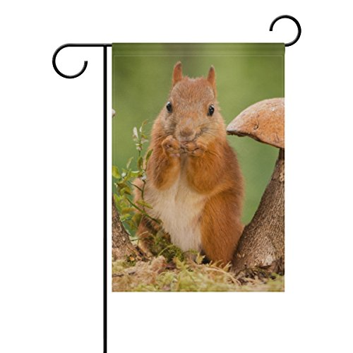 My Daily Cute Squirrel Mushroom Decorative Double Sided House Flag 28 x 40 inch