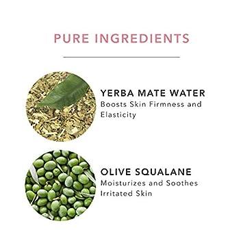 100 PURE Green Tea EGCG Concentrate Cream, Anti-Aging Face Moisturizer, Lightweight, Daily Face Cream 1.4 Fl Oz