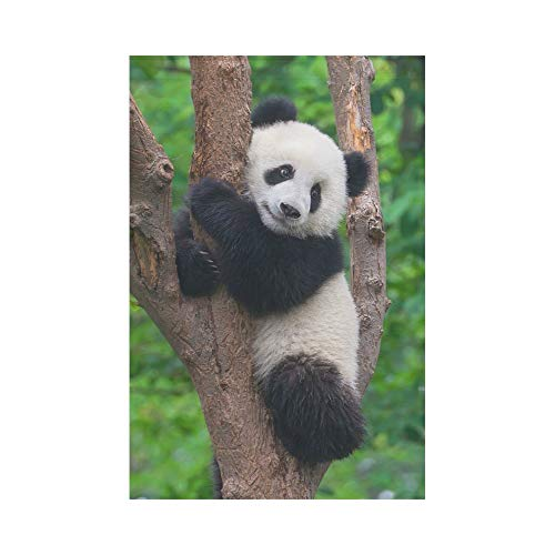 Cute Panda In Tree Polyester Garden Flag Outdoor Banner 12 X 18 Inch Chinese Bear Decorative Large House Flags For Wedding Party Yard Home Decor Buy Online See Prices