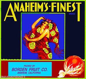 MAGNET Anaheim Anaheim's-Finest Senorita Orange Citrus Fruit Crate Magnet Art Print
