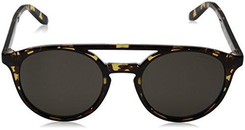 5037 havana Sonnenbrille Grey s Marron Carrera brw fxZRUvqSw