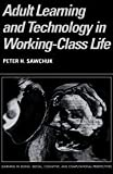 img - for Adult Learning and Technology in Working-Class Life (Learning in Doing: Social, Cognitive and Computational Perspectives) by Peter Sawchuk (2003-03-03) book / textbook / text book