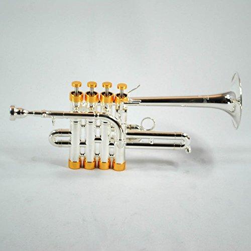 4 pic valve - 4