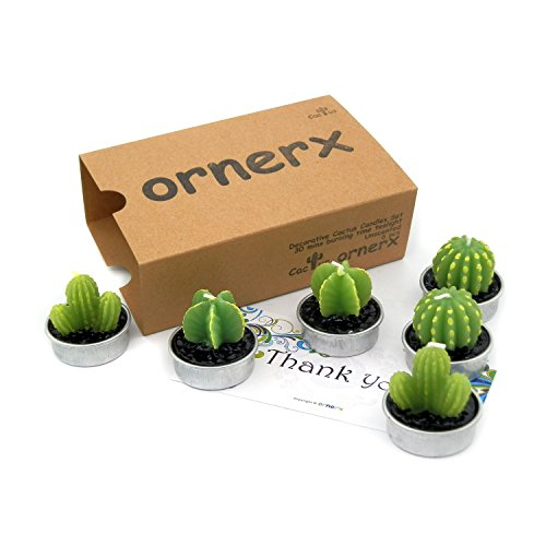 Ornerx Decorative Cactus Candles Tea Light Candles 6 Pcs 41AASfYM JL