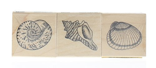 Stamps by Impression ST 0617a Sand Dollar Rubber Stamp 1.5 x 1.5