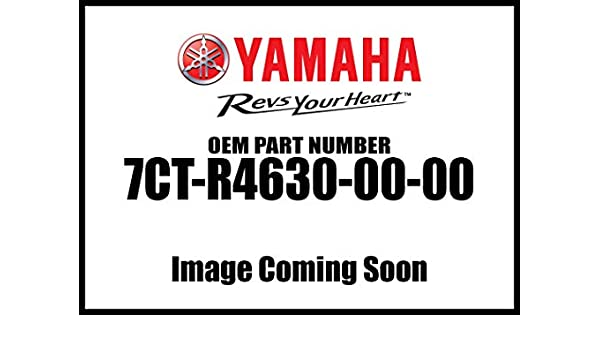 Yamaha Wand With Pivot 7Ct-R4630-00-00 New Oem