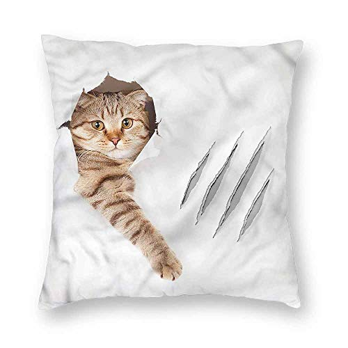- clayii Animal Polyster Pillow Cases Funny Cat in Wallpaper Hole Home Decorative 14x14 Inch