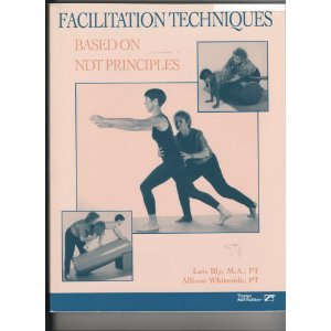 Facilitation Techniques Based on Ndt Principles