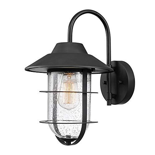 Globe Electric Matthews Outdoor Indoor Wall Sconce, Matte Black, Seeded Glass Shade 44333