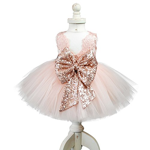 EsTong Newborn Baby Girls Sequins Bowknot Floral Princess Dresses Tulle Tutu Outfit Clothes Pink 1-2Y