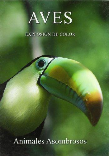 Descargar Libro Aves - Explosion De Color Aa.vv.