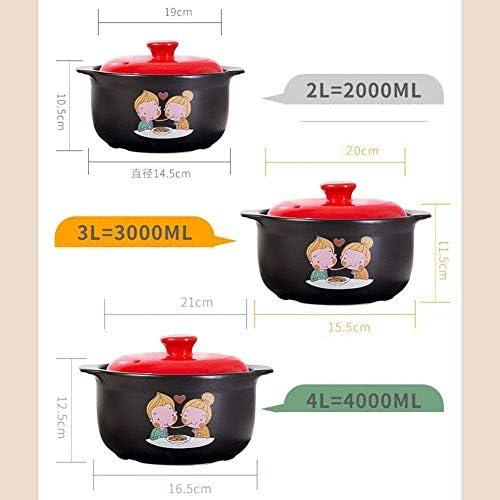 UWY Marmite pour marmite à ragoût Pots de Cuisson en Terre Cuite-Anti-brûlure et résistant à la Chaleur, Conception spéciale-4L
