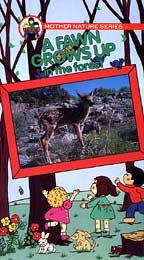 Fawn Grows Up in the Forest [VHS]