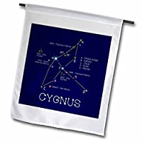 3dRose Alexis Design - Constellations of stars - Cygnus Swan star asterism. Star colors, names. Elegant astronomy - Flags