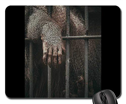 Mouse Pads - Animal Ape Cage Mammal Primate Zoo