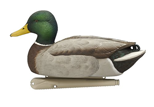 AvianX Top Flight Duck Open Water Mallard Decoy (6 Pack), Green