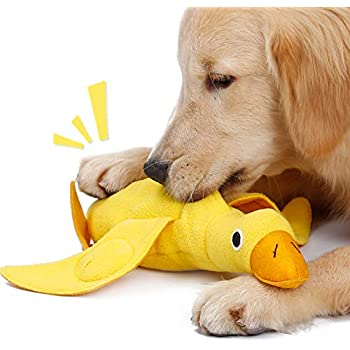 Pet Supplies : Aolvo Squeek Toys, Indestructible Soft
