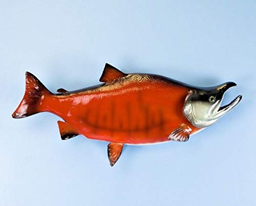 Land & Sea Taxidermy Quality Fiberglass Sockeye Salmon from Land & Sea