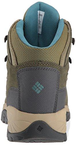 Columbia Women's Newton Ridge Plus Waterproof Amped Hiking Boot, Waterproof Leather 2