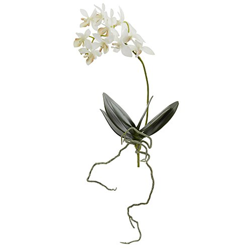 Nearly Natural 2232-S6 13 in. Mini Orchid Phalaenopsis Artificial (Set of 6) Silk Flowers -