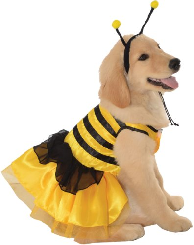 Bumblebee Dog Costume (BIMS Bumblebee Dress Pet Pet Pet Costume -)