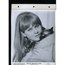 "Pierette Pradier OSS 117 Mission For Killer Original 8x10"" Key Book Photo #H4084"