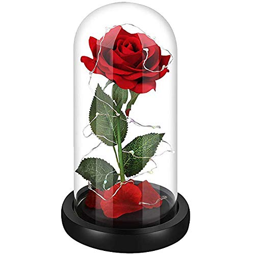 (Beauty and The Beast Rose,Red Silk Rose Flower and Led Light in Glass Dome,Decoration Home,Amazing and Romantic Gifts for Women,Hallowen, Christmas, Wedding,Valentine's Day, Anniversary and)