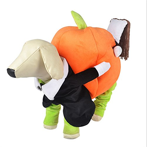 Dingang Funny Dog Clothes for Small Dogs, Carrying Pumpkin Halloween Christmas Gift Fancy Jumpsuit Puppy (Dog Costume Dog Carrying Present)