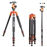 ZoMei Z888 Light Portable Magnesium Aluminium Travel Professional Tripod Come With Quick Release Plate Ball Head and Carry Case For Canon Sony ,Nikon,Olympus, Fuji DSLR Cameras(Orange)
