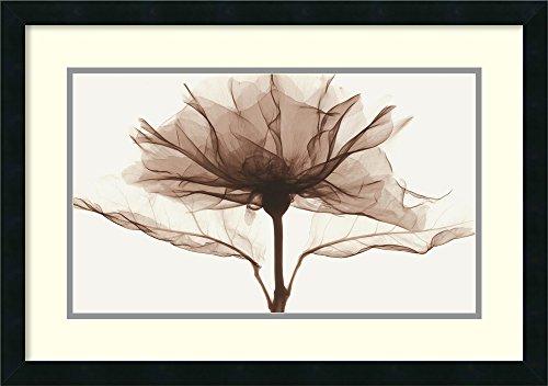 Framed Art Print,