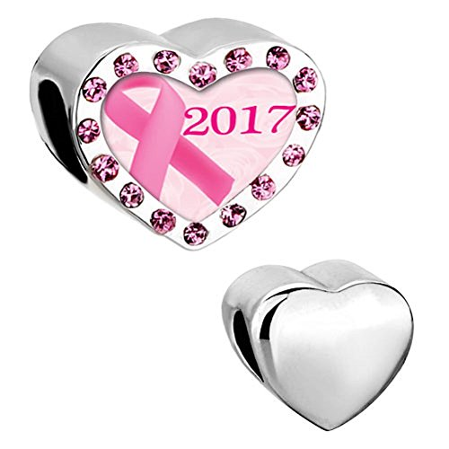 DemiJewelry Heart Pink Ribbon Breast Cancer Awareness Charms Beads for Charm Bracelet