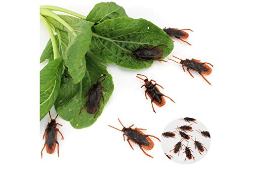 30pcs Funny Fake Roaches Prank Home Decoration Craft Halloween Props]()