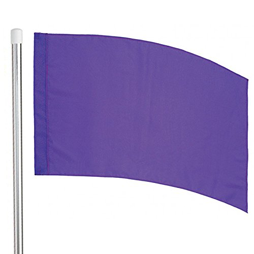 Director's Showcase 6' Silver Flag Pole and Color Guard Flag Package (Purple)