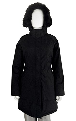 North Face Coat Winter - The North Face Arctic Parka Women's Black Small