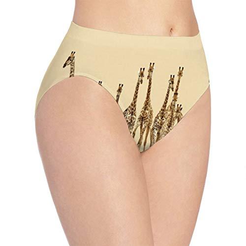 (Womens Underwear Giraffes Africa Unique Bikini Brief Hipster Panties)