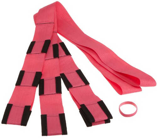 Forearm Forklift Lifting and Moving Straps for Furniture, Appliances, Mattresses or Heavy Objects up to 800 Pounds 2-Person, Model L74995P, Hot Pink from Forearm Forklift