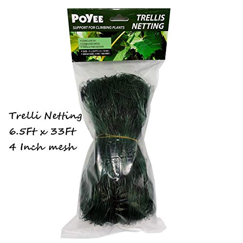 - Poyee Trellis Netting - 6.5 Ft x 33 Ft, Heavy Duty Net Support for Climbing Vining Plants. (2 x 10 Meters)