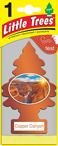 Little Trees Copper Canyon Air Freshener   Pack Of 12