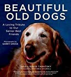 img - for David Tabatsky: Beautiful Old Dogs : A Loving Tribute to Our Senior Best Friends (Hardcover); 2013 Edition book / textbook / text book
