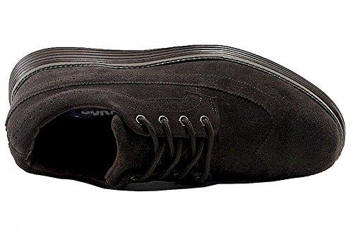Wingtip Cuddy Suede Dark Island Fashion Men's Surf Shoes Brown OwHHqRtF