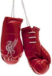 Liverpool FC Mini Boxing Gloves (One Size) (Red)