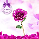 Kiminana Real Rose,24K Rose Gold Does not Wither Roses, high-Grade Roses