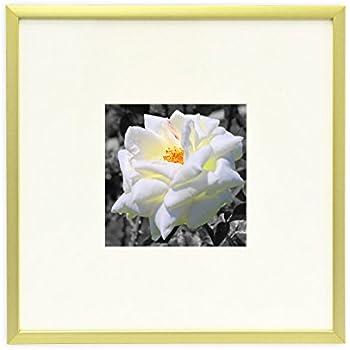 Amazon Frametory 8x8 Inch Instagram Square Aluminum Gold