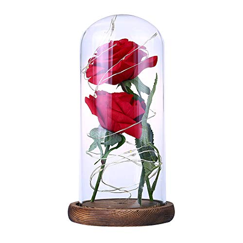 TOOGOO Beauty Rose and Beast Led Light With Fallen Flower Petals in a Glass Dome On a Wooden Base Valentine's Day Anniversary Birthday Wedding Gift Red + Brown