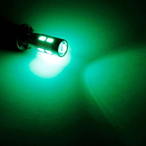 10 000 hour lightbulbs - 9