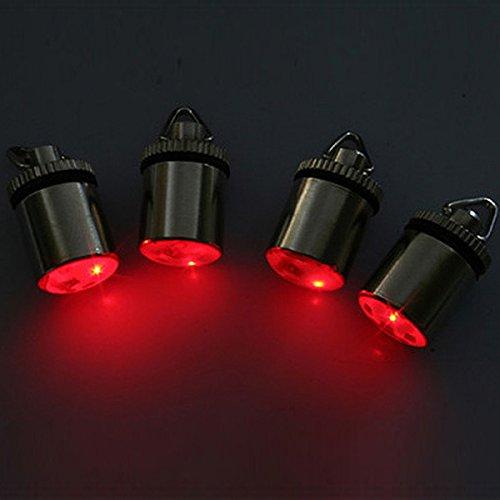Flashing Lamp Fish Lure Mini LED Underwater Drop Fishing ...